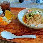 夏の定番、ローストチキンの涼麺!TDL・チャイナボイジャーの「ボイジャーセット」